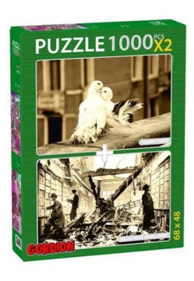 Romantic Pigeons Holland House London Library 2x1000 Parça Puzzle 40145
