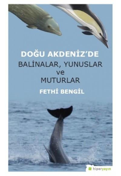 Doğu Akdenizde Balinalar, Yunuslar ve Muturlar