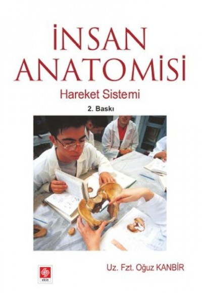 İnsan Anatomisi Hareket Sistemi