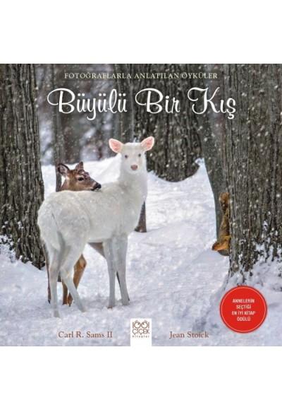Fotoğraflarla Anlatılan Öyküler Büyülü Bir Kış