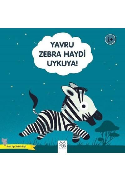 Yavru Zebra Haydi Uykuya Güzel Uyu Sağlıklı Büyü