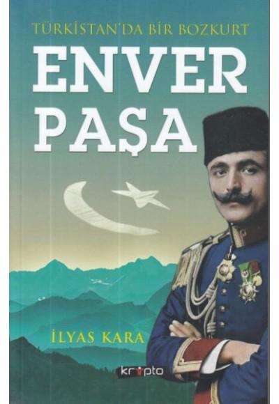 Türkistan'da Bir Bozkurt Enver Paşa