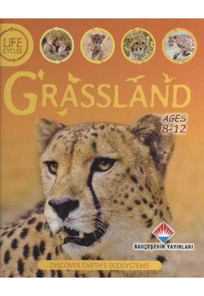 Life Cycles Grassland 8 12 Ages