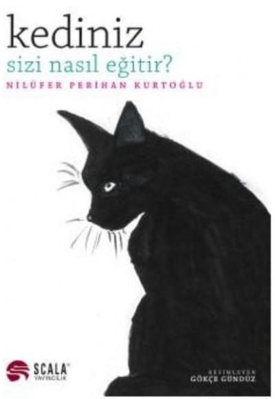 Kediniz Sizi Nasıl Eğitir