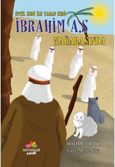 Evcil Kedi İle Yaban Kedi İbrahim A.S Mağarasında