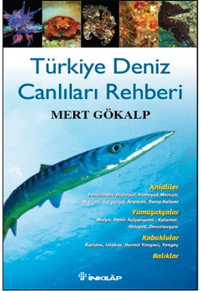 Türkiye Deniz Canlıları Rehberi