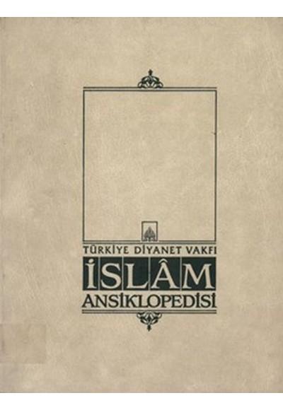 İslam Ansiklopedisi 43.Cit