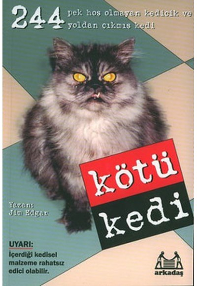 Kötü Kedi